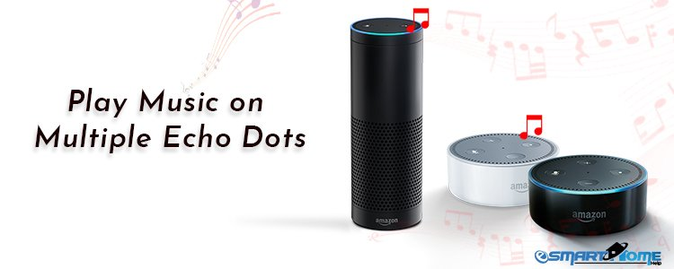 Play Music on Multiple Echo Dots